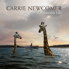 A_Permeable_Life_Cover